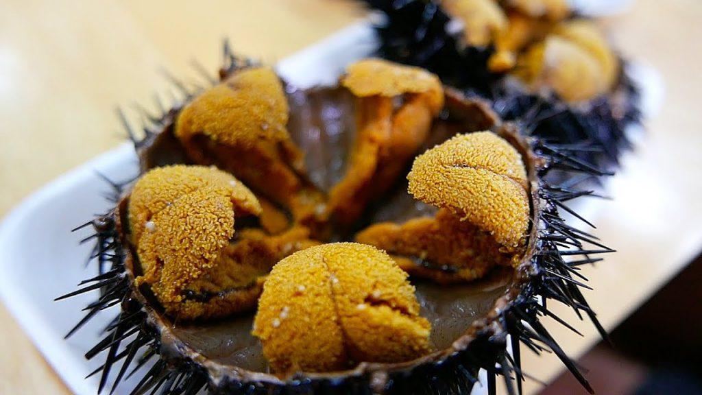 Món ăn từ con nhím biển - Cầu gai biển